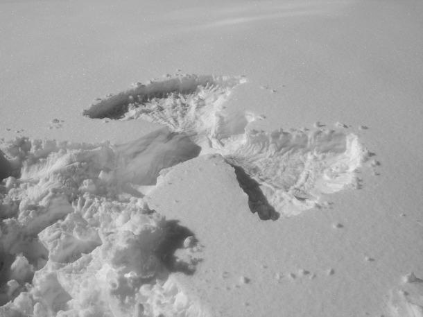 snow-1958658_960_720